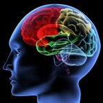 Boosting Boomer Brains